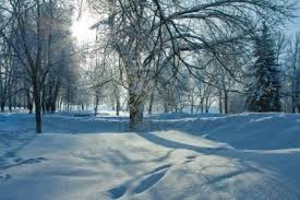Winter nature backgrounds Portrait Usbdata Beautiful Nature Winter Download Wallpapers Page