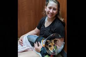 Fundraiser for Kristi Jobe by Ashley Jobe : Ruger's Surgery