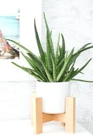 wood plant stand wooden plant outdoor wood plant stand plans