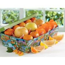 florida five with honeybells citrus gift box hale groves gourmetgiftbox anniversary