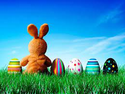 Easter Bunny Wallpaper Hd For Desktop ...