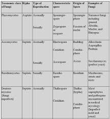 Kingdoms Of Biology Chart Biology Biological Classification Revision Notes For Neet