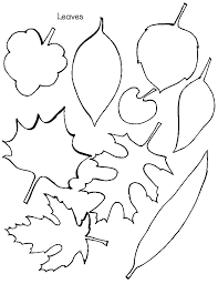 Small Picture Oak Leaf Template Coloring Coloring Pages