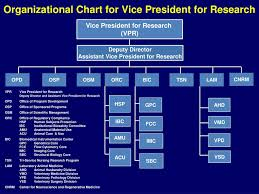 Acu Org Chart Ppt Office Of Research Powerpoint Presentation Free