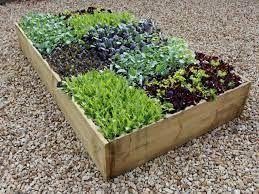 vegetable beds raised vegetable garden