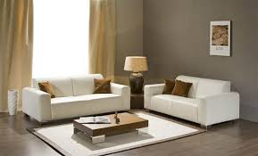 small living room sofa designs. furniture ideas for small glamorous sofa design living room designs e