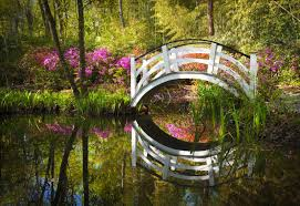 the southern romance of the nation s oldest public garden