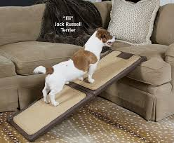 image of best dog ramp for couch ideas
