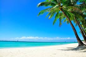 Image result for white sand beach