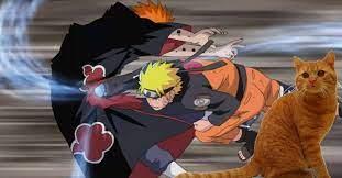 Naruto Fan Recreates The Pain Fight Using Cats