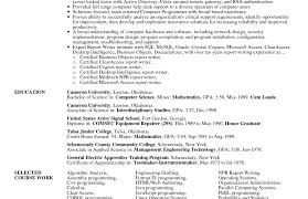 resume resume services review amazing professional resume