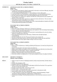 Manager Visual Merchandising Resume Samples Velvet Jobs