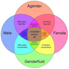 Identity Venn Diagram Is It Possible To Feel Like Youre Both Agender And A Woman