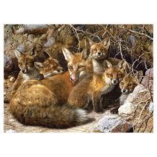 full house by carl brenders mother fox her kittens