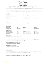 College Student Resume Template Microsoft Word Awesome 25 Dance