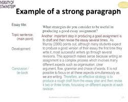Example Of A Good Conclusion For An Essay Sample Conclusion Paragraph Persuasive Essay Examples For Essays