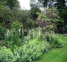 Small Picture Garden Design Garden Design with Woodland Garden Design with How