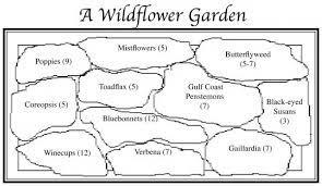 wildflower garden garden planning