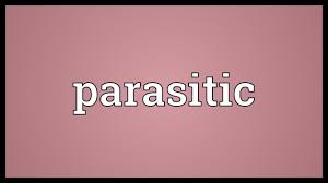 A parasite is an organism which exploits another organism for the purpose of staying alive. Parasitic Meaning Youtube