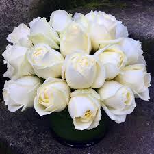 two dozen clic white roses in