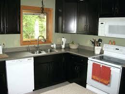 Small L Shaped Kitchen Design Ideas Interesting Decoration