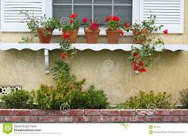 Fenster Regal Mit Eingemachten Anlagen Stockbild Bild Von Wohnung
