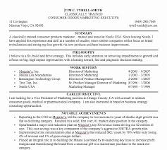 What Is Executive Summary On Resume Unique Personal Summary Resume Custom Personal Summary Resume