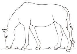 Disegni Di Cavalli Da Colorare Immagini Di Cavalli Da Stampare