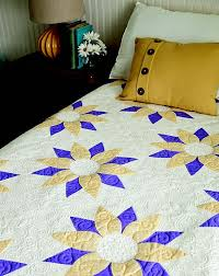 Beginner's Guide to Free-Motion Quilting: 50+ Visual Tutorials to ... & Beginner's Guide to Free-Motion Quilting Adamdwight.com