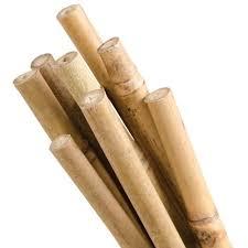 bamboo garden stakes. VP-N51X.jpg Bamboo Garden Stakes L