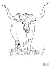 Small Picture Texas Longhorn Cow coloring page Free Printable Coloring Pages