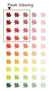 Fall Leaf Color Chart Fall Colours At Ontario Parks