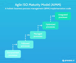 Best Features Of Process Oriented Performance Assessment Design What Are Maturity Models In Business Capability Maturity