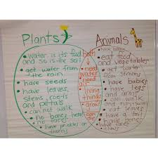 Venn Diagram Living And Nonliving Things Comparing Living Things Plants And Animals Venn Diagram