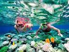 Znalezione obrazy dla zapytania snorkeling