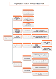 Best Program For Org Charts Org Chart Of Social Service Organization Org Charting