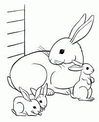 Velveteen Rabbit Clipart (66+)