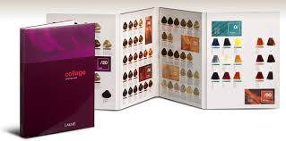 Lakme Collage Hair Color Chart Brands Of Professional Hair Colors Rating Rating Of The