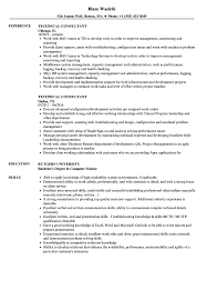 Technical Consultant Resume Samples Velvet Jobs