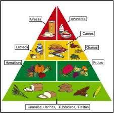 Resultado de imagen para carbohidratos alimentos