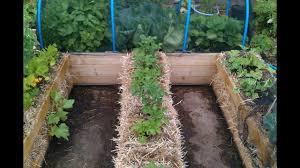 raised bed vs straw bale gardening