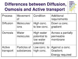 Venn Diagram Of Diffusion Osmosis And Active Transport Venn Diagram Comparing Osmosis And Diffusion