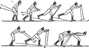 Реферат лыжная подготовка Реферат