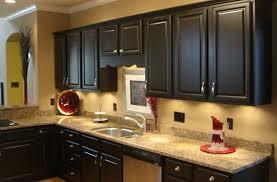 Popular Kitchen Cabinet Styles Design736571 Black Kitchen Cabinet Ideas 17 Best Ideas About