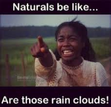 28 of Our Favorite Natural Hair Memes | Braid Out, Twist Outs and ... via Relatably.com