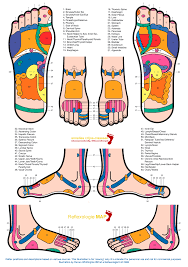 Zones Reflexology Reflexology Foot Reflexology