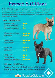 French Bulldog Chart French Bulldog Breed French Bulldog