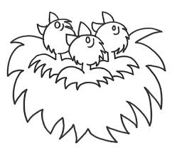 Small Picture Bird Nest Coloring Page Coloring Home