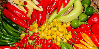 Resultado de imagem para pimenta