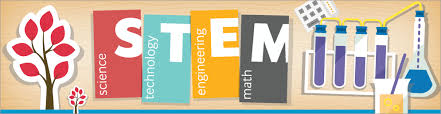 Image result for stem education images